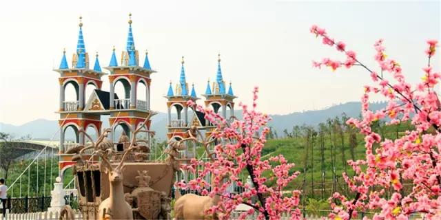 惠州温泉小镇鲁冰花童话园鲜花环绕